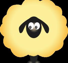 mouton_jaune